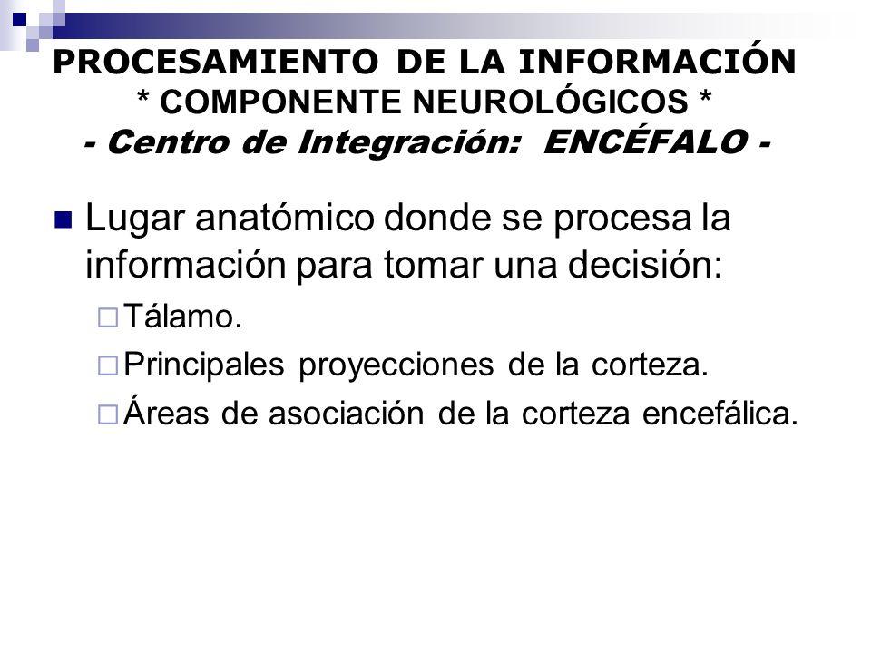 PROCESAMIENTO DE LA INFORMACIÓN * COMPONENTE NEUROLÓGICOS * - Centro de Integración: ENCÉFALO - Lugar anatómico donde se procesa la información para t