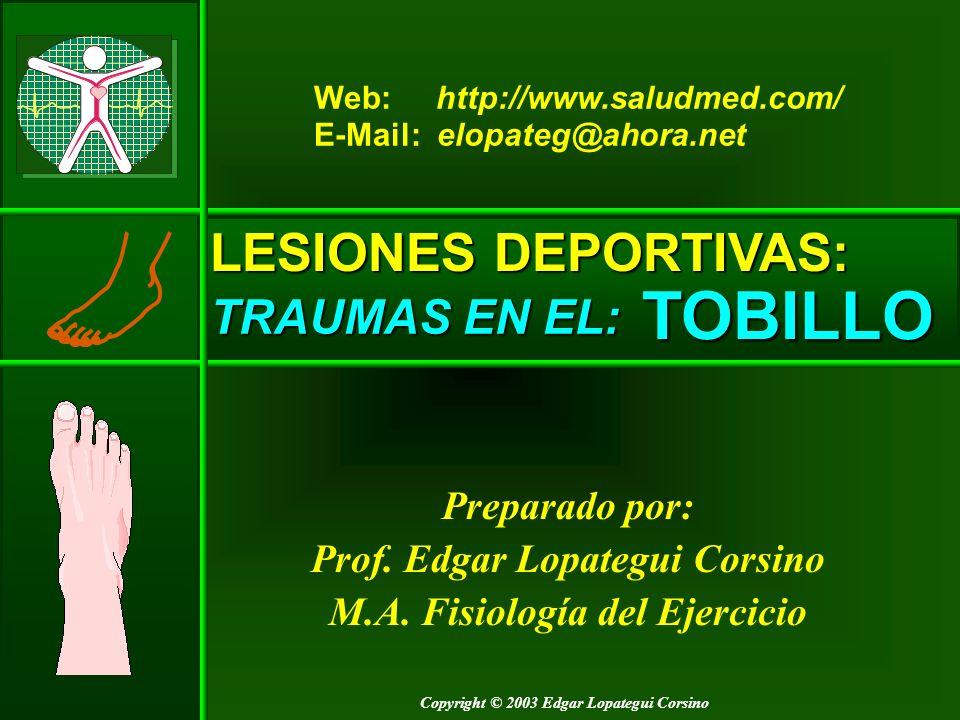 TOBILLO: Anatomía EXTERNOS – Lista Lateral (Externa) NOTA: De: (1997) 3D Super Anatomy.