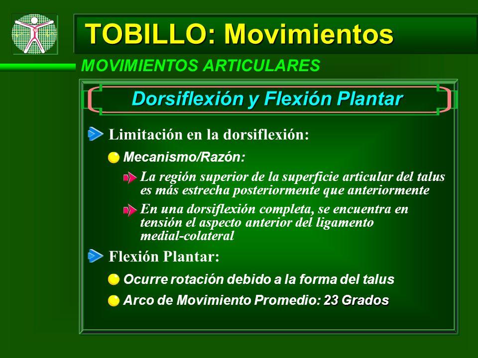 TOBILLO: Movimientos MOVIMIENTOS ARTICULARES Dorsiflexión y Flexión Plantar Limitación en la dorsiflexión: Mecanismo/Razón: La región superior de la s