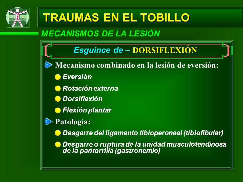 TRAUMAS EN EL TOBILLO MECANISMOS DE LA LESIÓN Esguince de – DORSIFLEXIÓN Mecanismo combinado en la lesión de eversión: Eversión Dorsiflexión Flexión p