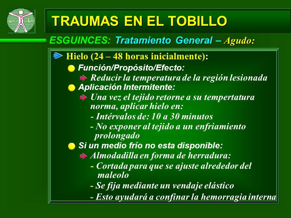 Tratamiento General – Agudo: ESGUINCES: Tratamiento General – Agudo: TRAUMAS EN EL TOBILLO Hielo (24 – 48 horas inicialmente): Aplicación Intermitente