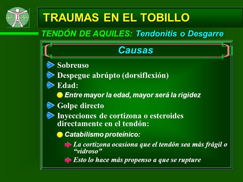 Tendonitis o Desgarre TENDÓN DE AQUILES: Tendonitis o Desgarre TRAUMAS EN EL TOBILLO Causas Sobreuso Despegue abrúpto (dorsiflexión) Edad: Entre mayor