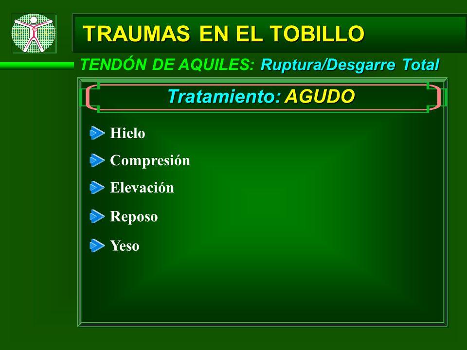 Ruptura/Desgarre Total TENDÓN DE AQUILES: Ruptura/Desgarre Total TRAUMAS EN EL TOBILLO Hielo Compresión Elevación Reposo Tratamiento: AGUDO Yeso