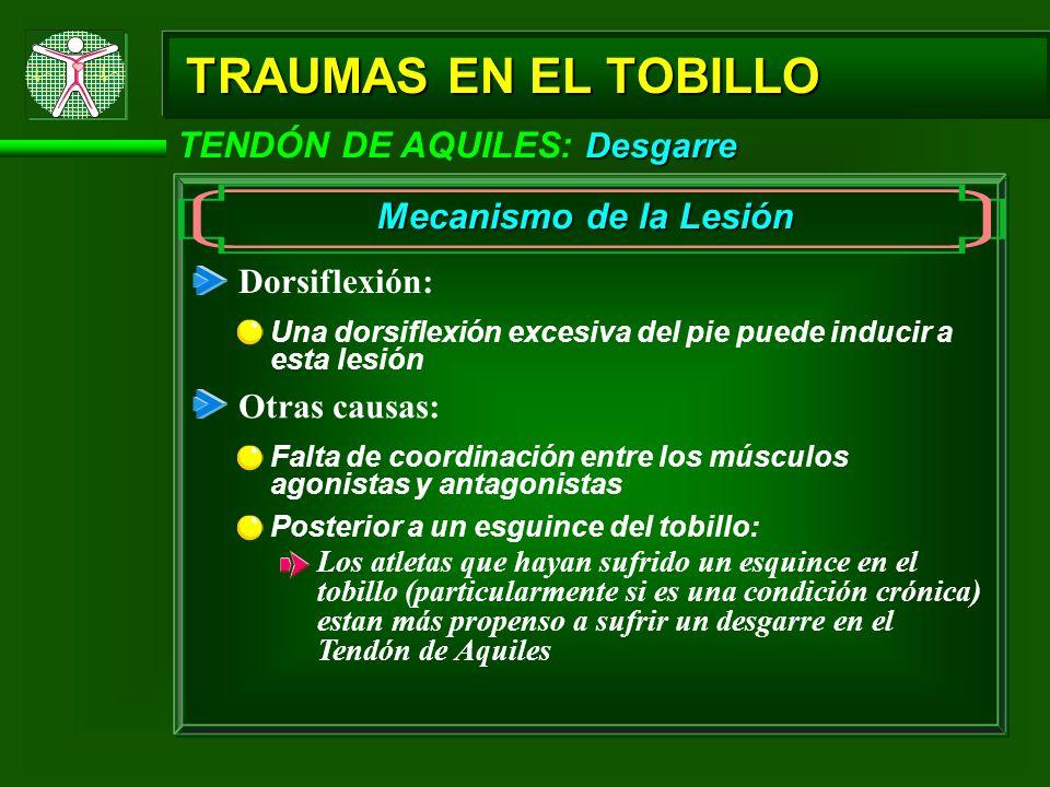 Desgarre TENDÓN DE AQUILES: Desgarre TRAUMAS EN EL TOBILLO Mecanismo de la Lesión Dorsiflexión: Una dorsiflexión excesiva del pie puede inducir a esta