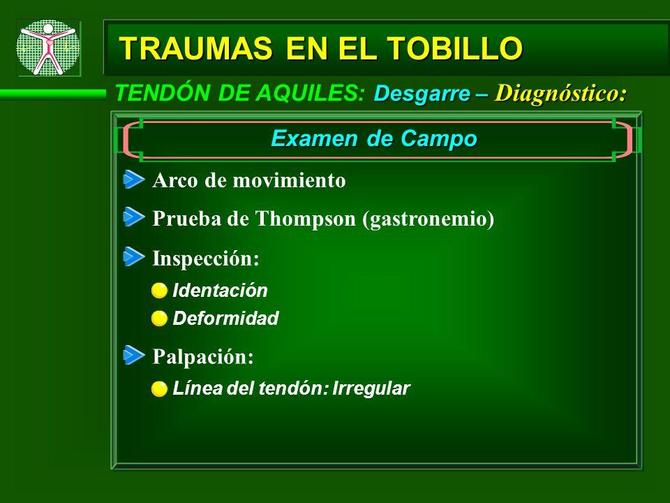 Desgarre – Diagnóstico: TENDÓN DE AQUILES: Desgarre – Diagnóstico: TRAUMAS EN EL TOBILLO Examen de Campo Arco de movimiento Prueba de Thompson (gastro