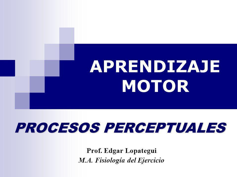 APRENDIZAJE MOTOR Prof. Edgar Lopategui M.A. Fisiología del Ejercicio PROCESOS PERCEPTUALES