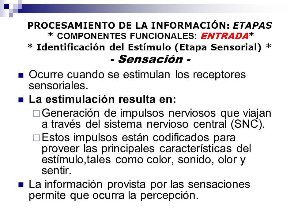PROCESAMIENTO DE LA INFORMACIÓN: ETAPAS * COMPONENTES FUNCIONALES: ENTRADA * * Identificación del Estímulo (Etapa Sensorial) * - Sensación - Ocurre cu