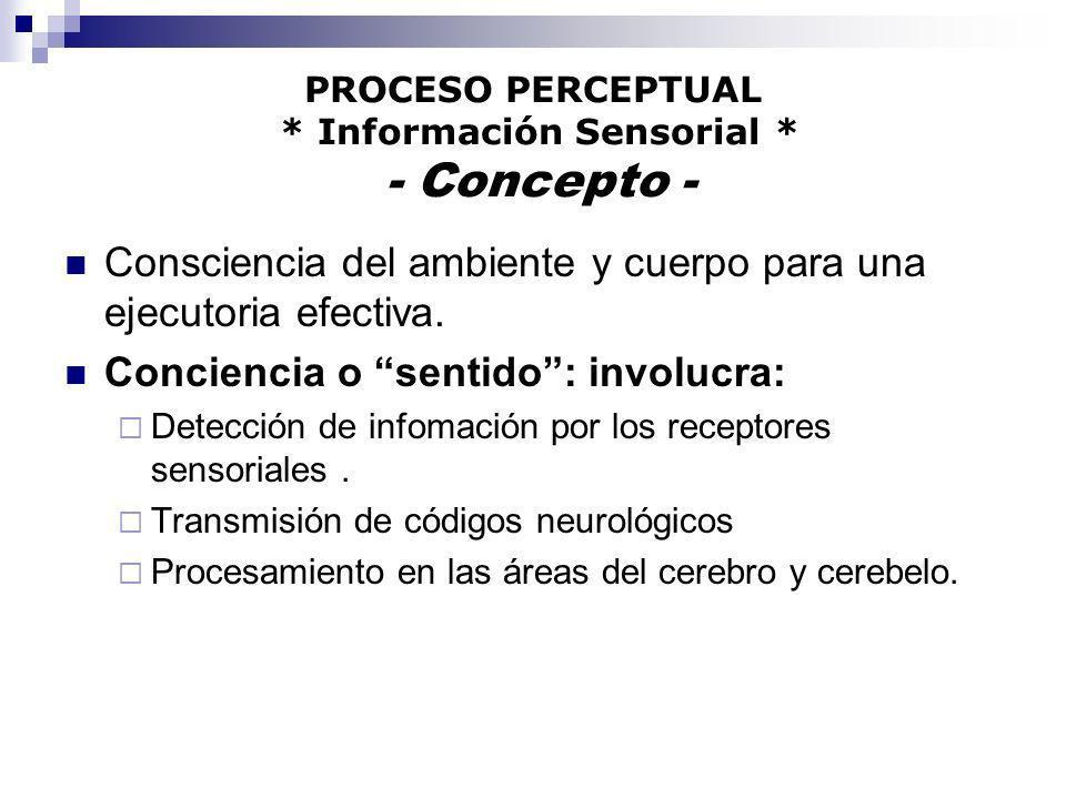 PROCESO PERCEPTUAL * Información Sensorial * - Concepto - Consciencia del ambiente y cuerpo para una ejecutoria efectiva. Conciencia o sentido: involu