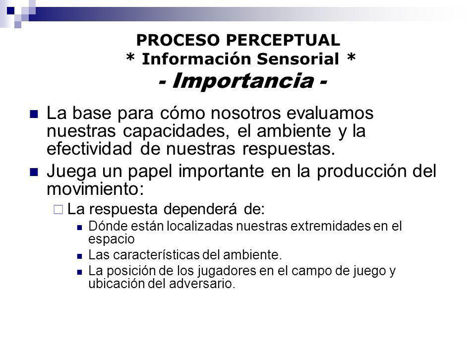 PROCESO PERCEPTUAL * Información Sensorial * - Importancia - La base para cómo nosotros evaluamos nuestras capacidades, el ambiente y la efectividad d