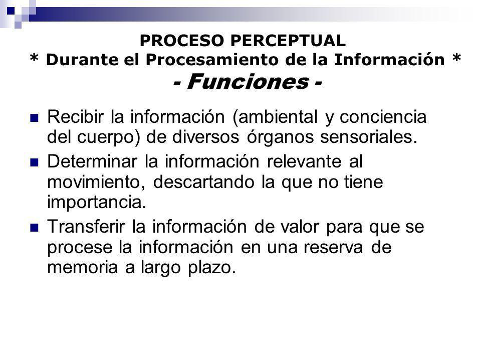 PROCESO PERCEPTUAL * Durante el Procesamiento de la Información * - Funciones - Recibir la información (ambiental y conciencia del cuerpo) de diversos