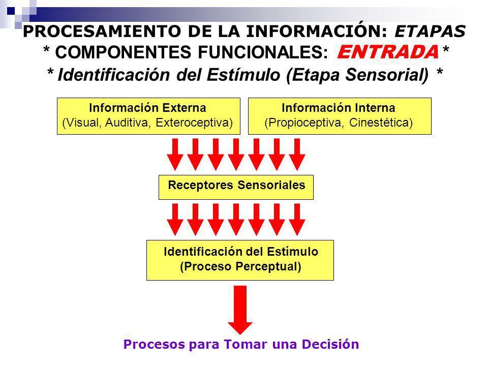 Información Externa (Visual, Auditiva, Exteroceptiva) Procesos para Tomar una Decisión Receptores Sensoriales Identificación del Estímulo (Proceso Per