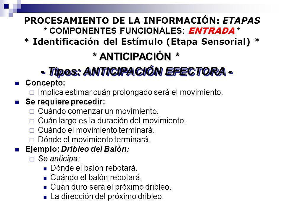PROCESAMIENTO DE LA INFORMACIÓN: ETAPAS * COMPONENTES FUNCIONALES: ENTRADA * * Identificación del Estímulo (Etapa Sensorial) * Concepto: Implica estim