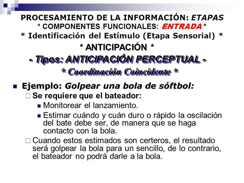 PROCESAMIENTO DE LA INFORMACIÓN: ETAPAS * COMPONENTES FUNCIONALES: ENTRADA * * Identificación del Estímulo (Etapa Sensorial) * Ejemplo: Golpear una bo