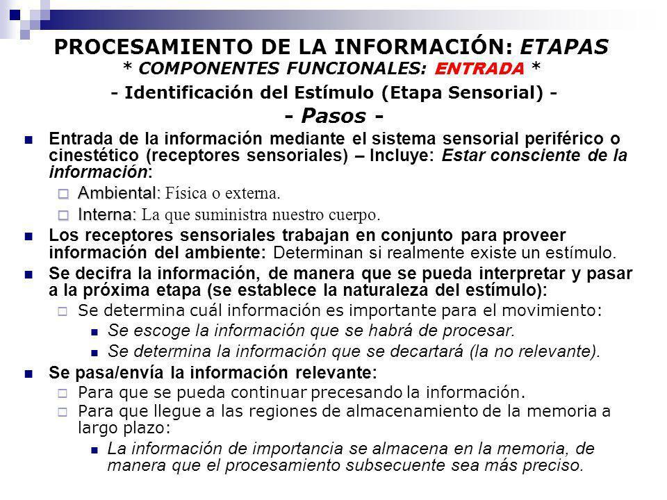 PROCESAMIENTO DE LA INFORMACIÓN: ETAPAS * COMPONENTES FUNCIONALES: ENTRADA * - Identificación del Estímulo (Etapa Sensorial) - - Pasos - Entrada de la