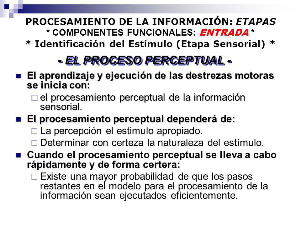 PROCESAMIENTO DE LA INFORMACIÓN: ETAPAS * COMPONENTES FUNCIONALES: ENTRADA * * Identificación del Estímulo (Etapa Sensorial) * El aprendizaje y ejecuc