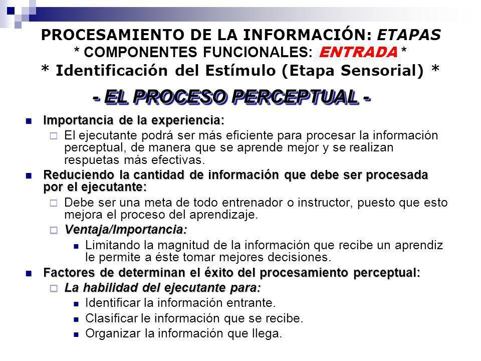 PROCESAMIENTO DE LA INFORMACIÓN: ETAPAS * COMPONENTES FUNCIONALES: ENTRADA * * Identificación del Estímulo (Etapa Sensorial) * Importancia de la exper