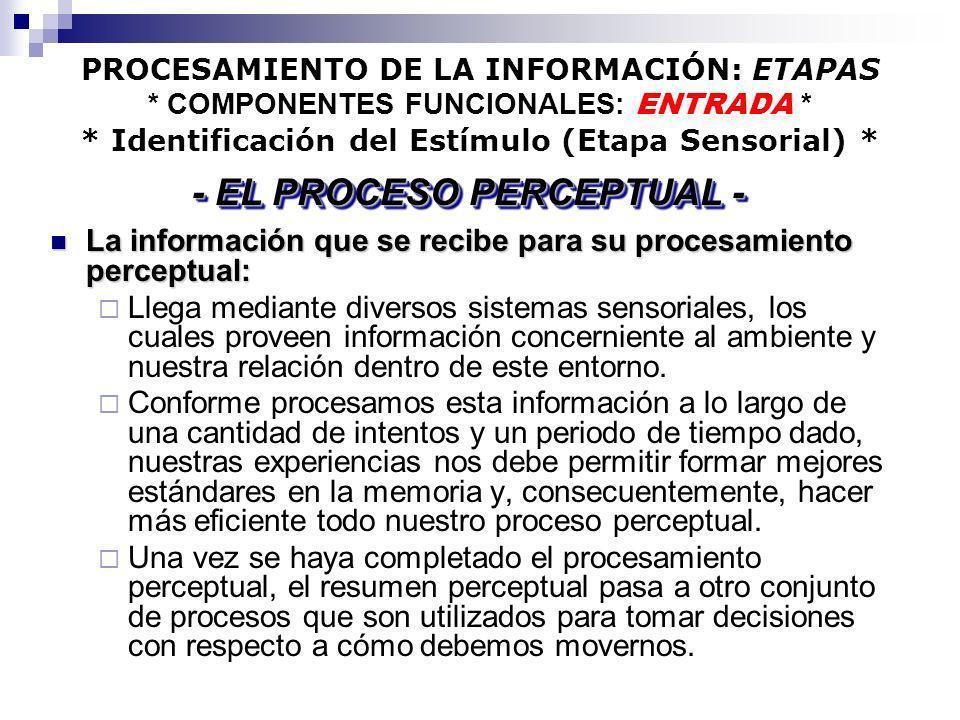 PROCESAMIENTO DE LA INFORMACIÓN: ETAPAS * COMPONENTES FUNCIONALES: ENTRADA * * Identificación del Estímulo (Etapa Sensorial) * La información que se r
