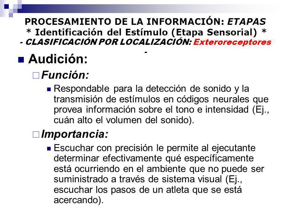 PROCESAMIENTO DE LA INFORMACIÓN: ETAPAS * Identificación del Estímulo (Etapa Sensorial) * - CLASIFICACIÓN POR LOCALIZACIÓN: Exteroreceptores - Audició
