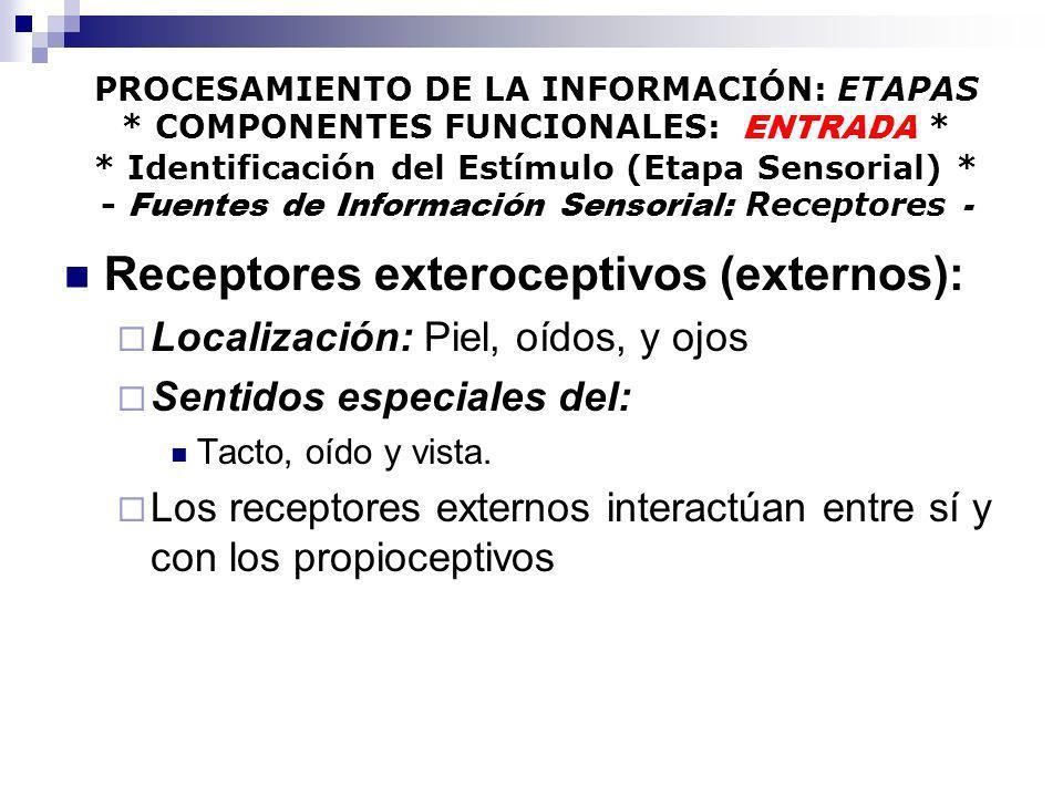 PROCESAMIENTO DE LA INFORMACIÓN: ETAPAS * COMPONENTES FUNCIONALES: ENTRADA * * Identificación del Estímulo (Etapa Sensorial) * - Fuentes de Informació