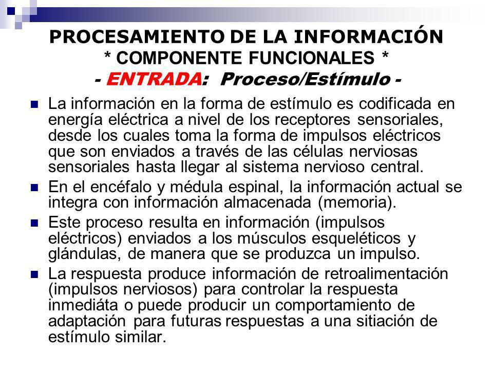 PROCESAMIENTO DE LA INFORMACIÓN * COMPONENTE FUNCIONALES * - ENTRADA: Proceso/Estímulo - La información en la forma de estímulo es codificada en energ