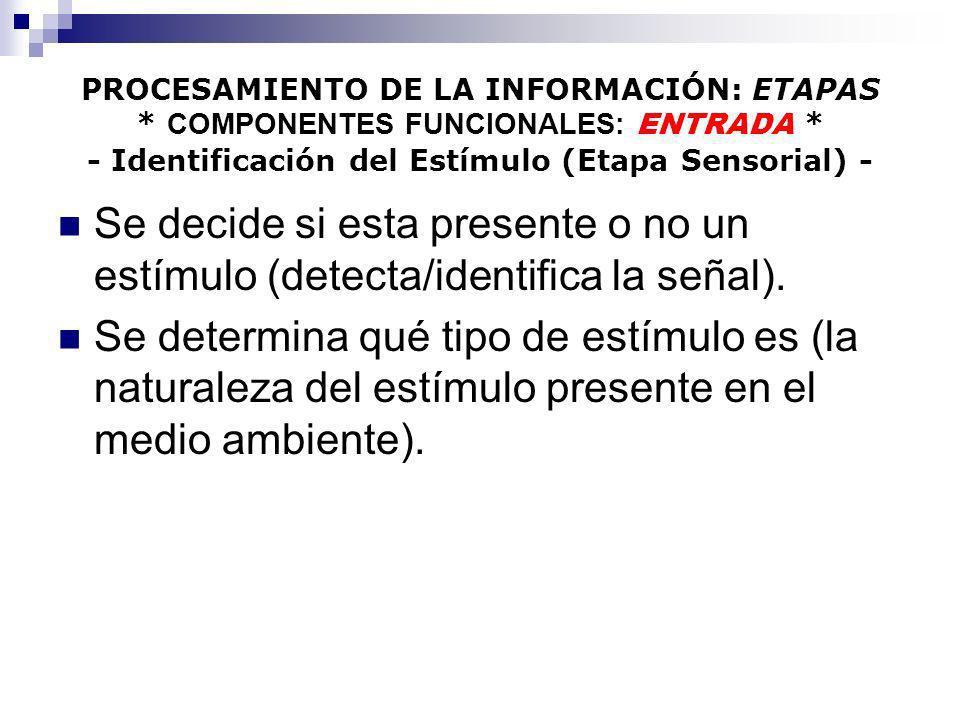 PROCESAMIENTO DE LA INFORMACIÓN: ETAPAS * COMPONENTES FUNCIONALES: ENTRADA * - Identificación del Estímulo (Etapa Sensorial) - Se decide si esta prese