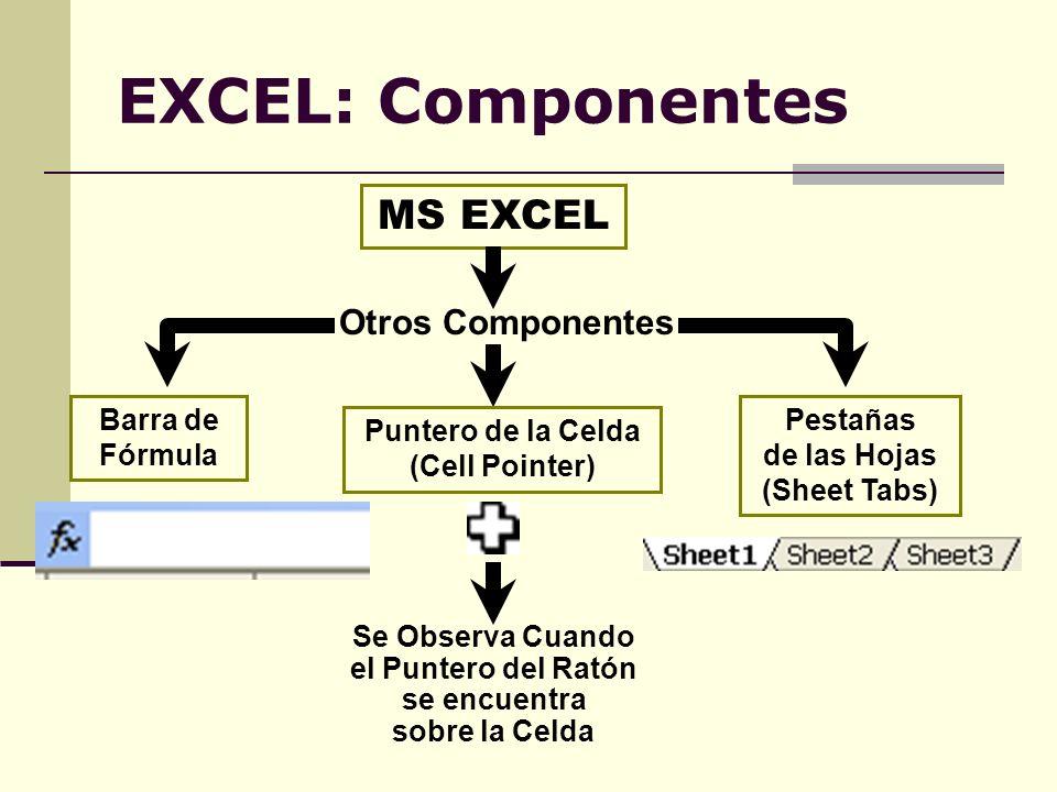 EXCEL: Componentes MS EXCEL Otros Componentes Puntero de la Celda (Cell Pointer) Se Observa Cuando el Puntero del Ratón se encuentra sobre la Celda Ba