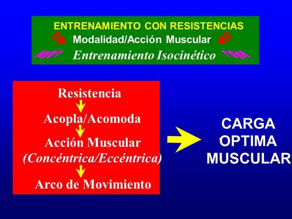 ENTRENAMIENTO CON RESISTENCIAS Entrenamiento Isocinético Modalidad/Acción Muscular Resistencia Acopla/Acomoda Acción Muscular (Concéntrica/Eccéntrica)