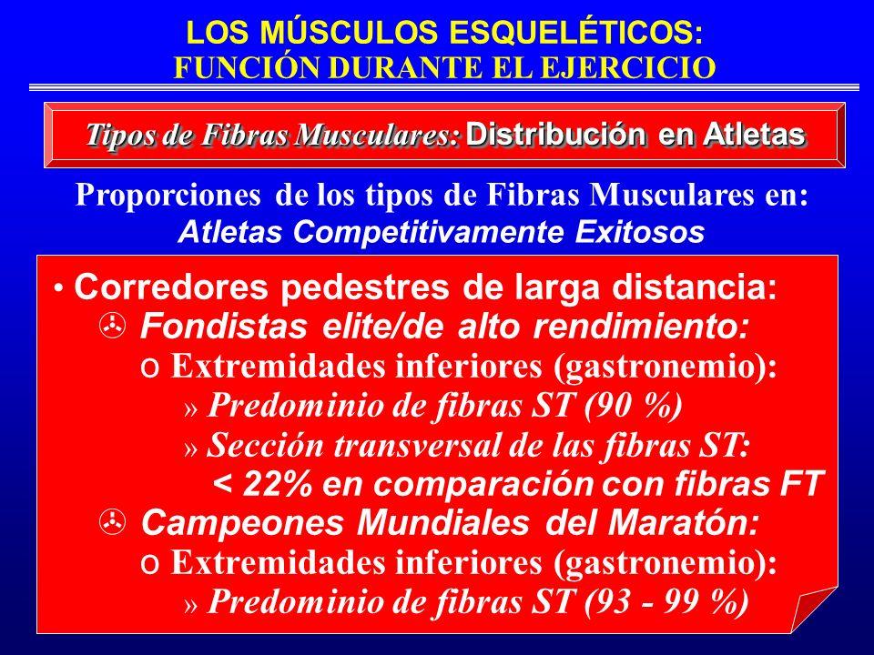 LOS MÚSCULOS ESQUELÉTICOS: FUNCIÓN DURANTE EL EJERCICIO Tipos de Fibras Musculares: Distribución en Atletas Proporciones de los tipos de Fibras Muscul