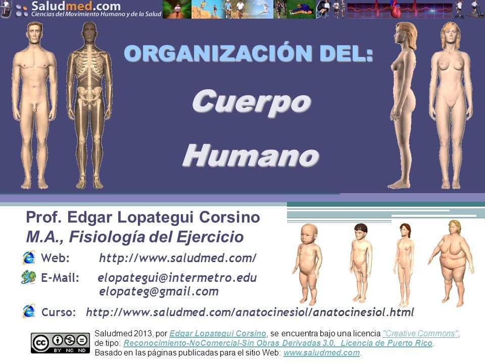 Copyright © 2013 Edgar Lopategui Corsino   Saludmed