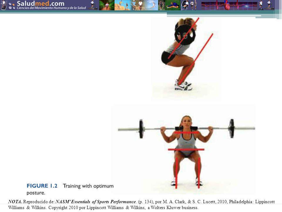 NOTA.Reproducido de: NASM Essentials of Sports Performance.