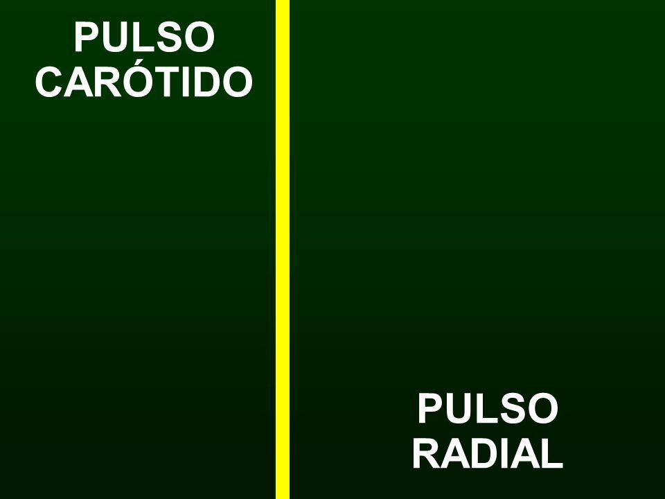 PULSO RADIAL PULSO CARÓTIDO