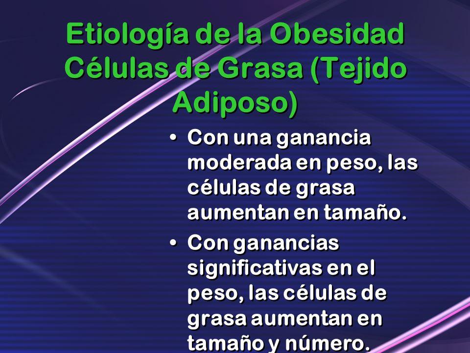 Etiología de la Obesidad Células de Grasa (Tejido Adiposo) Con una ganancia moderada en peso, las células de grasa aumentan en tamaño. Con ganancias s