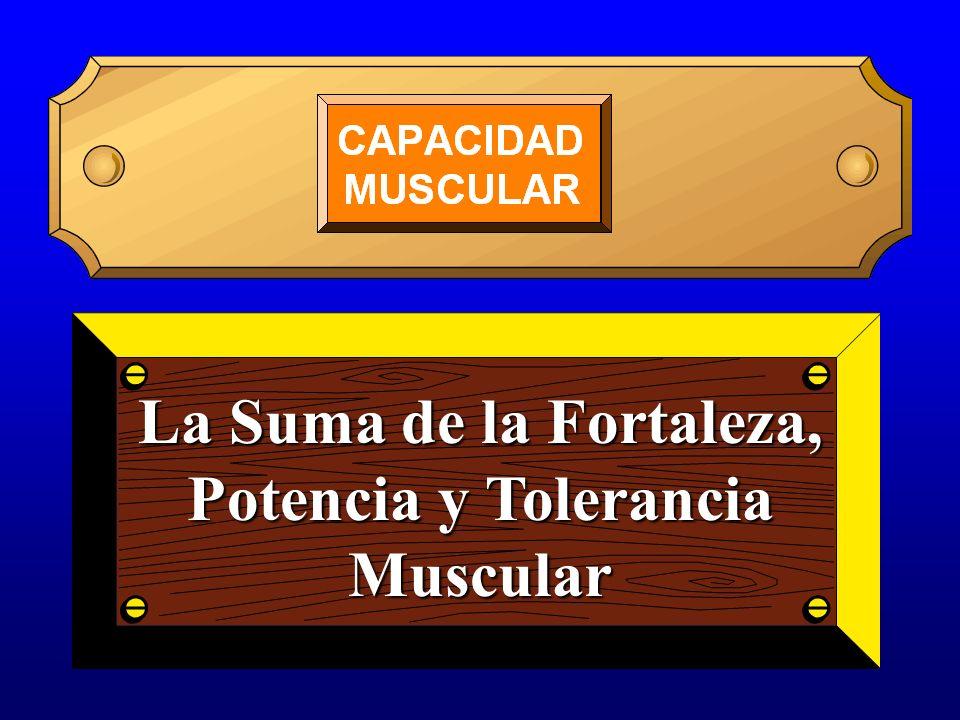 La Suma de la Fortaleza, Potencia y Tolerancia Muscular
