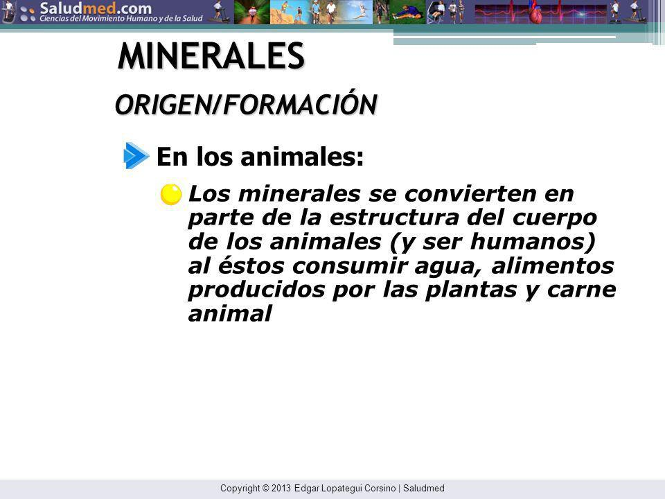 Copyright © 2013 Edgar Lopategui Corsino | Saludmed MINERALES ORIGEN/FORMACIÓN Los minerales se encuentran en el agua de los ríos, lagos y oceanos, en