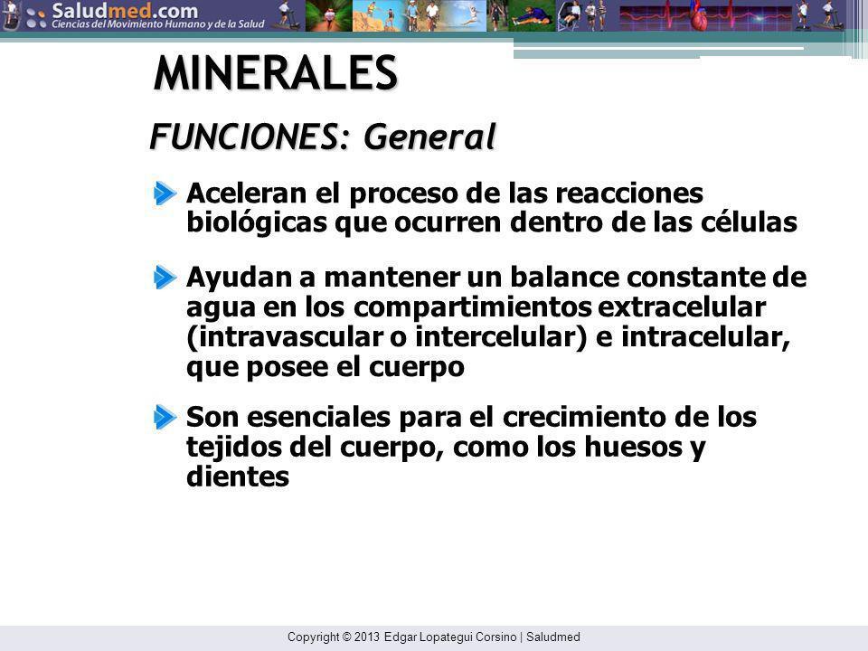 Copyright © 2013 Edgar Lopategui Corsino | Saludmed MINERALES FUNCIONES: General Ayudan a mantener la reacción alcalina, ácida o neutra de los tejidos