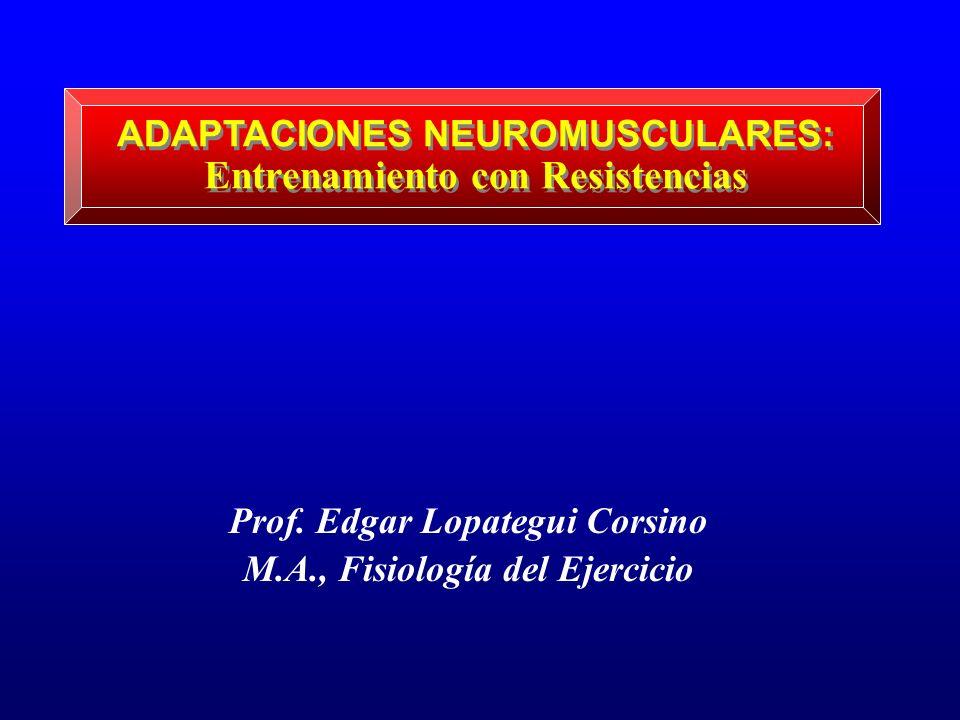 ADAPTACIONES NEUROMUSCULARES: Entrenamiento con Resistencias Prof. Edgar Lopategui Corsino M.A., Fisiología del Ejercicio
