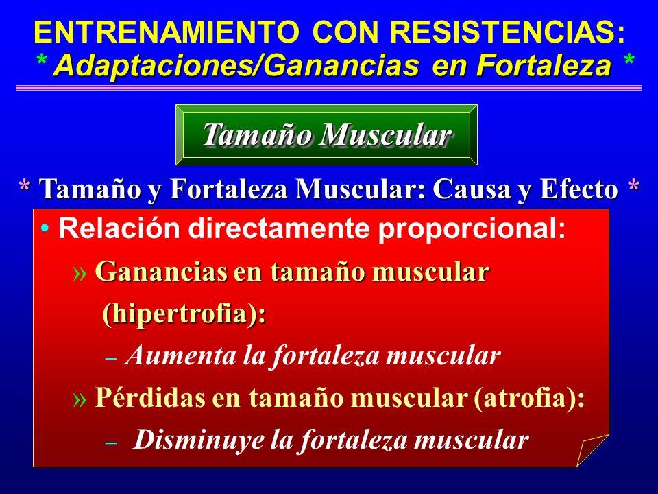 Adaptaciones/Ganancias en Fortaleza ENTRENAMIENTO CON RESISTENCIAS: * Adaptaciones/Ganancias en Fortaleza * * Tamaño y Fortaleza Muscular: Causa y Efe