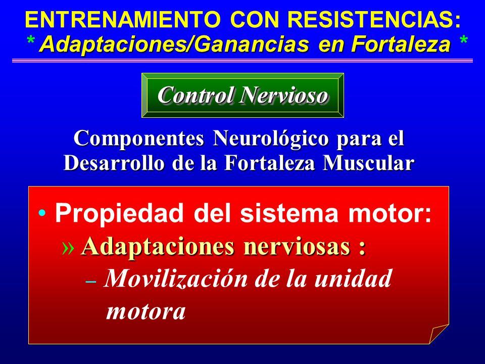 Adaptaciones/Ganancias en Fortaleza ENTRENAMIENTO CON RESISTENCIAS: * Adaptaciones/Ganancias en Fortaleza * Componentes Neurológico para el Desarrollo