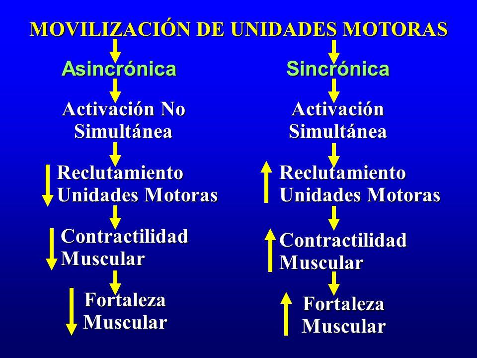 MOVILIZACIÓN DE UNIDADES MOTORAS AsincrónicaSincrónica Activación Simultánea Activación No Simultánea Contractilidad Muscular FortalezaMuscular Fortal