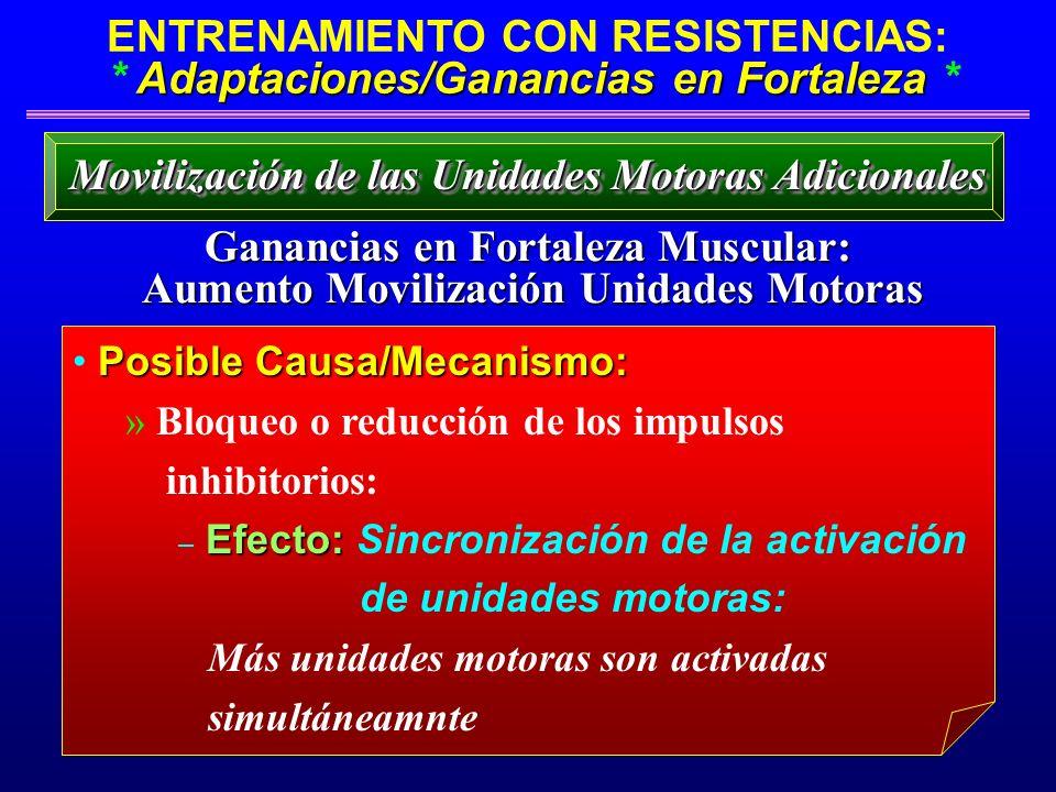 Adaptaciones/Ganancias en Fortaleza ENTRENAMIENTO CON RESISTENCIAS: * Adaptaciones/Ganancias en Fortaleza * Ganancias en Fortaleza Muscular: Aumento M