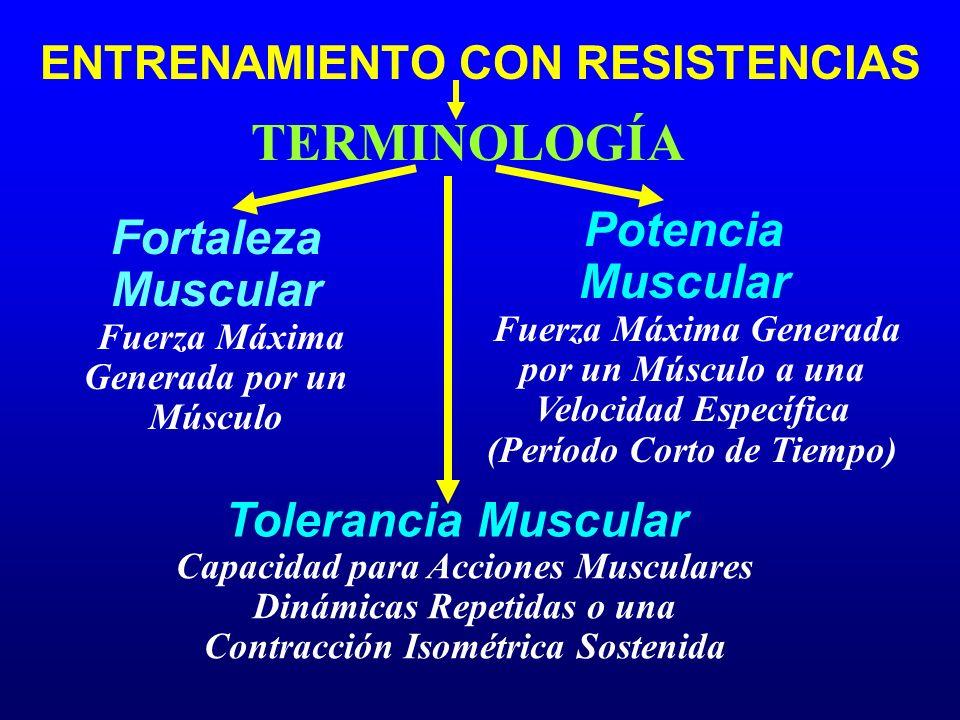 Fortaleza Muscular TERMINOLOGÍA Potencia Muscular Tolerancia Muscular ENTRENAMIENTO CON RESISTENCIAS Fuerza Máxima Generada por un Músculo Fuerza Máxi