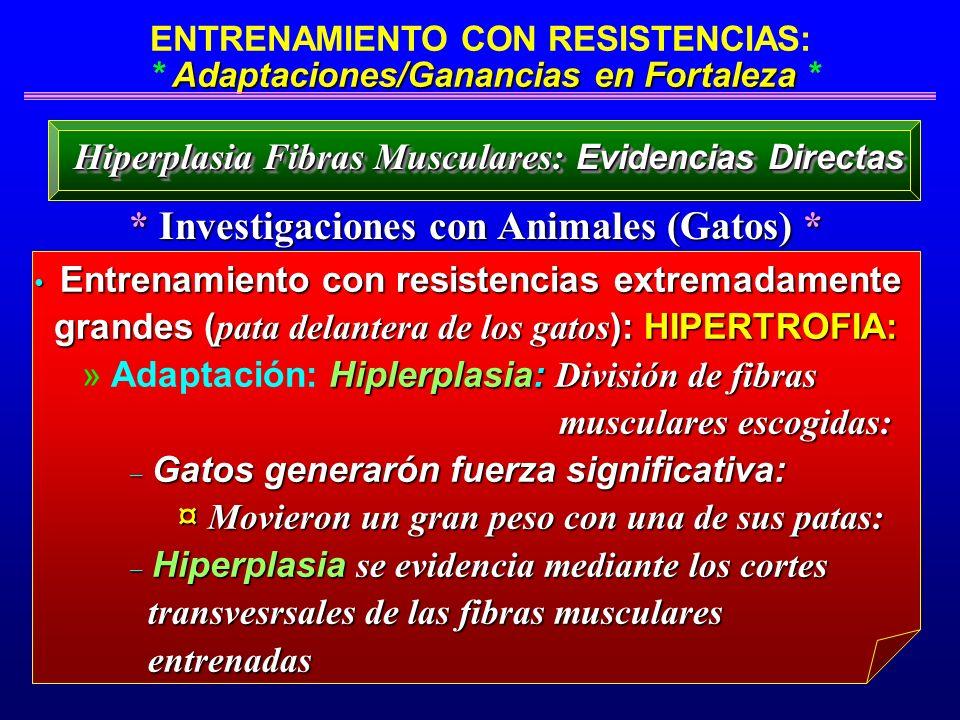 Adaptaciones/Ganancias en Fortaleza ENTRENAMIENTO CON RESISTENCIAS: * Adaptaciones/Ganancias en Fortaleza * * Investigaciones con Animales (Gatos) * H