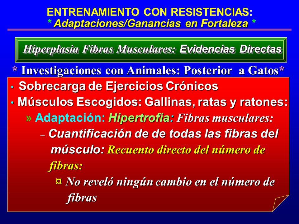 Adaptaciones/Ganancias en Fortaleza ENTRENAMIENTO CON RESISTENCIAS: * Adaptaciones/Ganancias en Fortaleza * * Investigaciones con Animales: Posterior