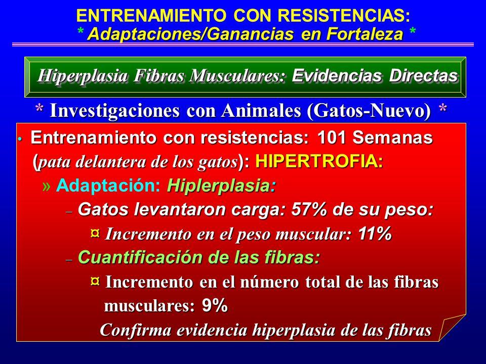 Adaptaciones/Ganancias en Fortaleza ENTRENAMIENTO CON RESISTENCIAS: * Adaptaciones/Ganancias en Fortaleza * * Investigaciones con Animales (Gatos-Nuev
