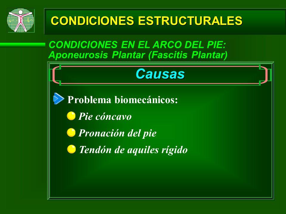 CONDICIONES ESTRUCTURALES CONDICIONES EN EL ARCO DEL PIE: Aponeurosis Plantar (Fascitis Plantar) Causas Problema biomecánicos: Pie cóncavo Pronación d