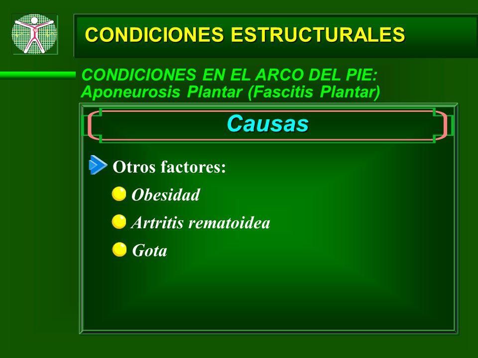 CONDICIONES ESTRUCTURALES CONDICIONES EN EL ARCO DEL PIE: Aponeurosis Plantar (Fascitis Plantar) Causas Otros factores: Obesidad Artritis rematoidea G
