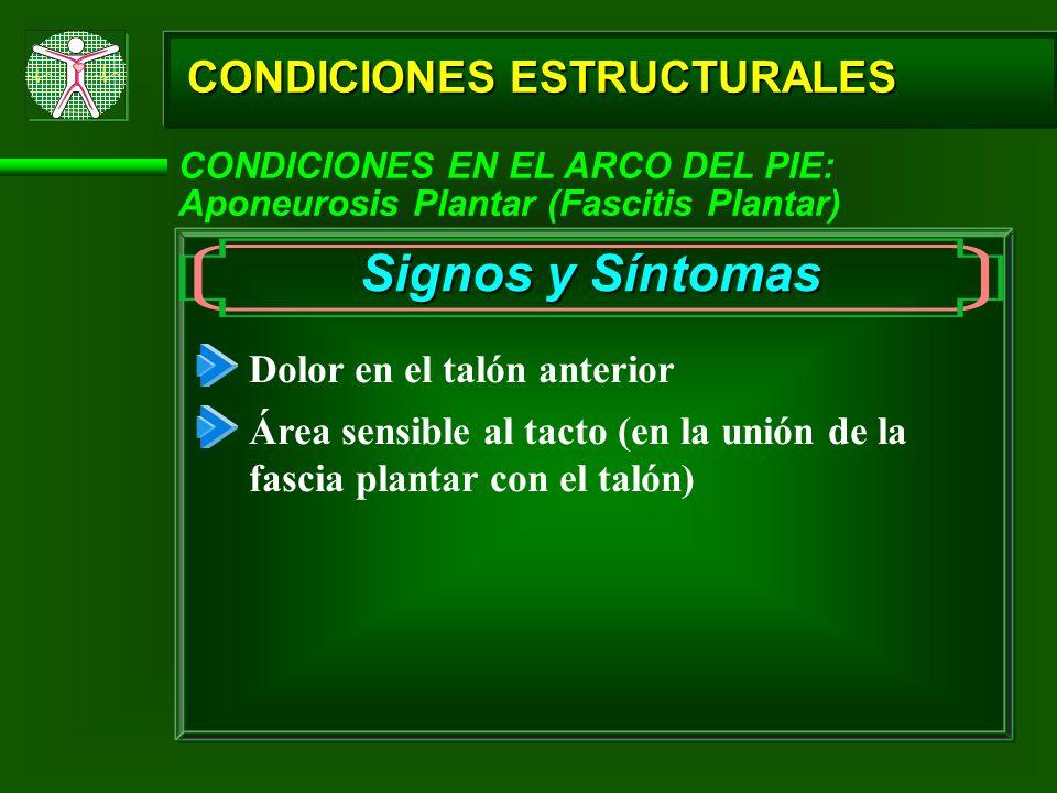 CONDICIONES ESTRUCTURALES CONDICIONES EN EL ARCO DEL PIE: Aponeurosis Plantar (Fascitis Plantar) Signos y Síntomas Dolor en el talón anterior Área sen