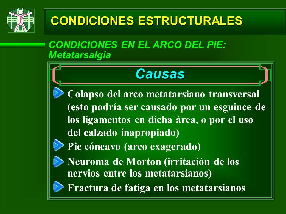CONDICIONES ESTRUCTURALES CONDICIONES EN EL ARCO DEL PIE: Metatarsalgia Causas Colapso del arco metatarsiano transversal (esto podría ser causado por