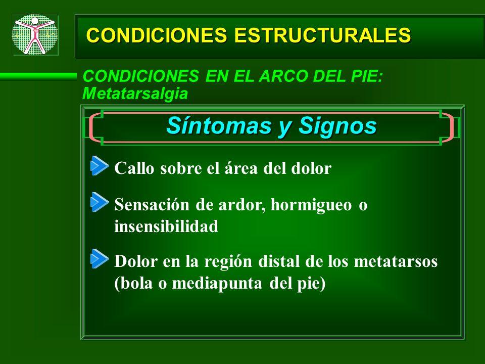 CONDICIONES ESTRUCTURALES CONDICIONES EN EL ARCO DEL PIE: Metatarsalgia Síntomas y Signos Callo sobre el área del dolor Sensación de ardor, hormigueo