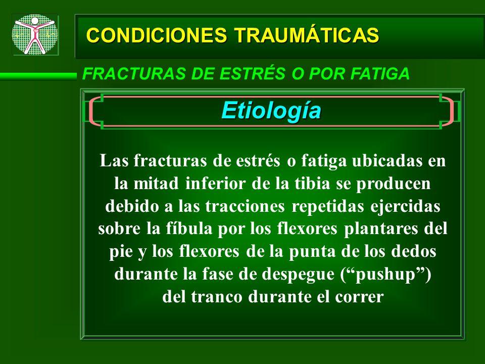 CONDICIONES TRAUMÁTICAS FRACTURAS DE ESTRÉS O POR FATIGA Etiología Las fracturas de estrés o fatiga ubicadas en la mitad inferior de la tibia se produ